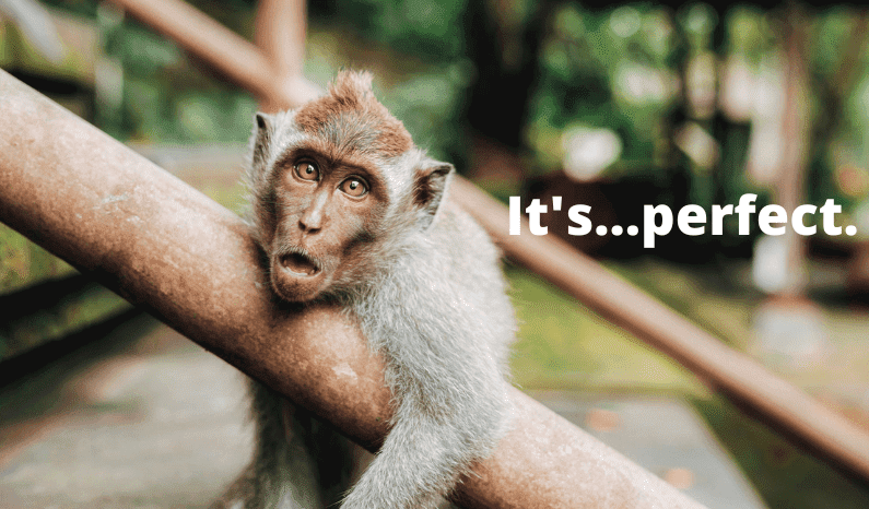 facebook a/b testing on a budget monkey in awe at the perfect ad
