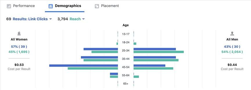 Facebook ads demographics