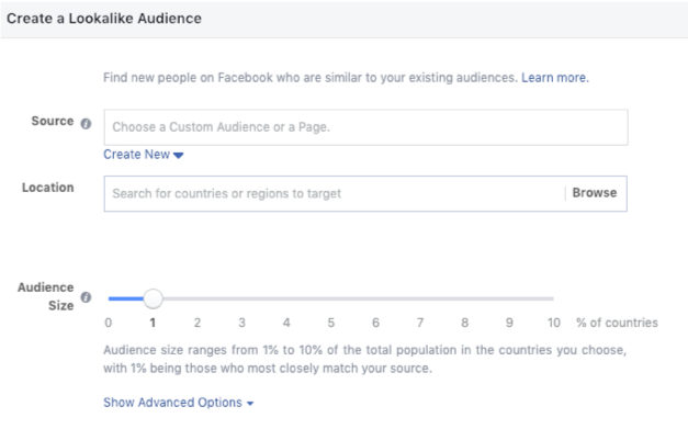 Facebook Lead Ads vs. Landing Pages Audience