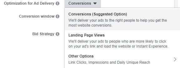 Facebook objectives ad delivery setting