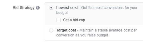 Facebook objectives bid strategy