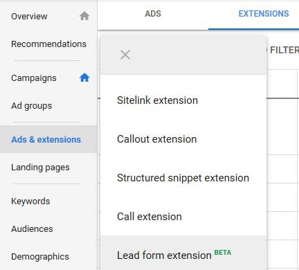 Image result for lead form extension ads