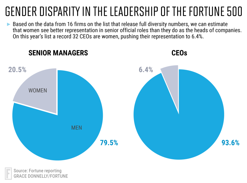 inclusion and diversity in marketing—pie chart showing gender disparity in fortune 500