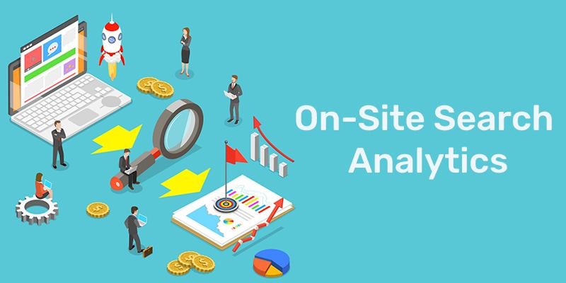 increase online store sales by analyzing data on-site search analytics