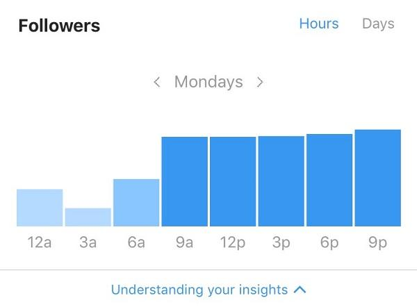 Instagram analytics follower stats