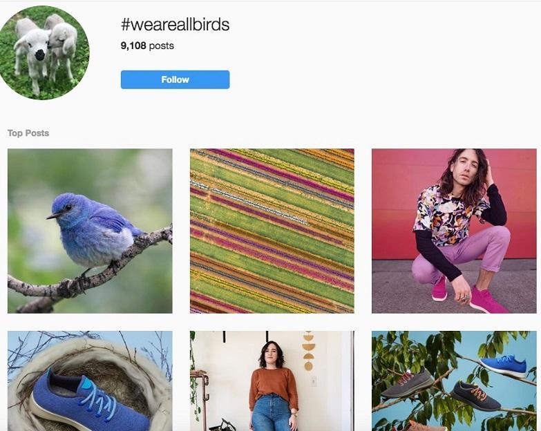 catchy brand hashtag example, allbirds