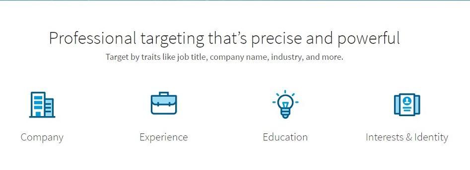 LinkedIn advertising audience targeting options