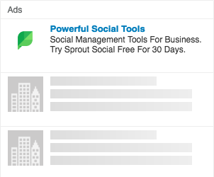 linkedin-interest-targeting-sprout-social-example
