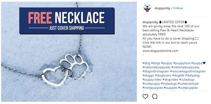 March marketing ideas puppy necklace