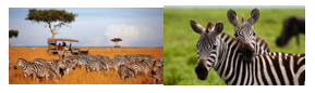 scaled-down-small-image-examples