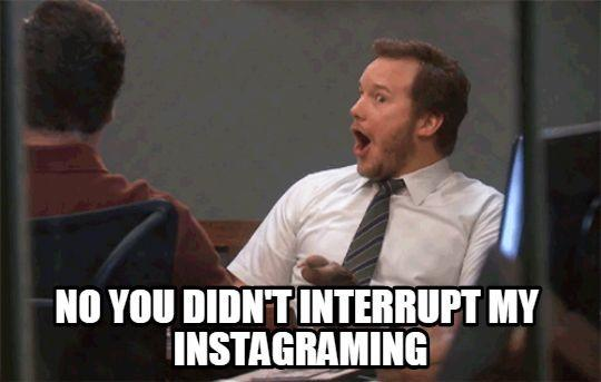 "Mobile clicks funny gif saying ""No you didn't interrupt my instagramming"""