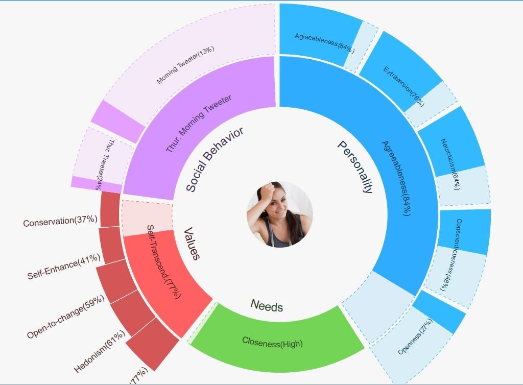Online privacy social media analytics IBM segments of one