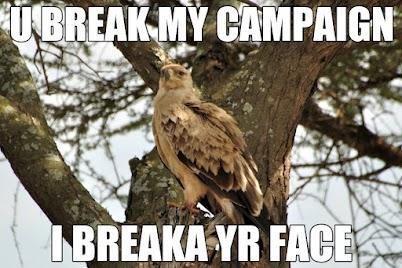 pissed bird