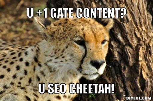 SEO Cheetah