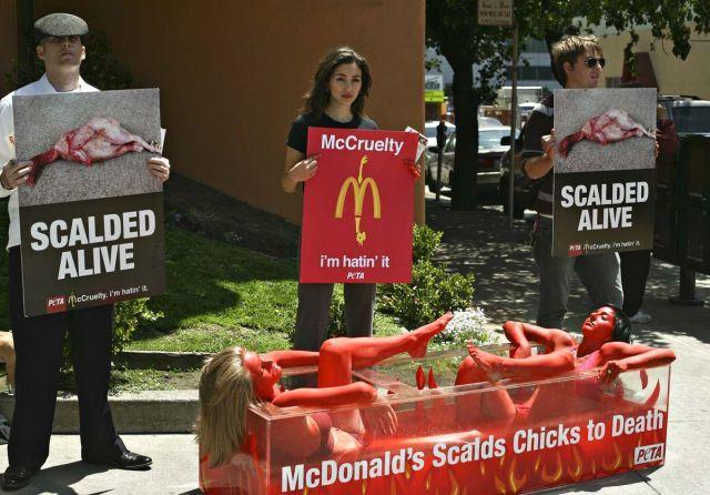 Social media for nonprofits controversial PETA ad example
