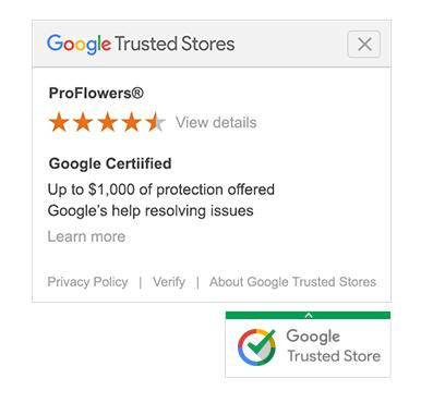 Trust signals Google Trusted Stores