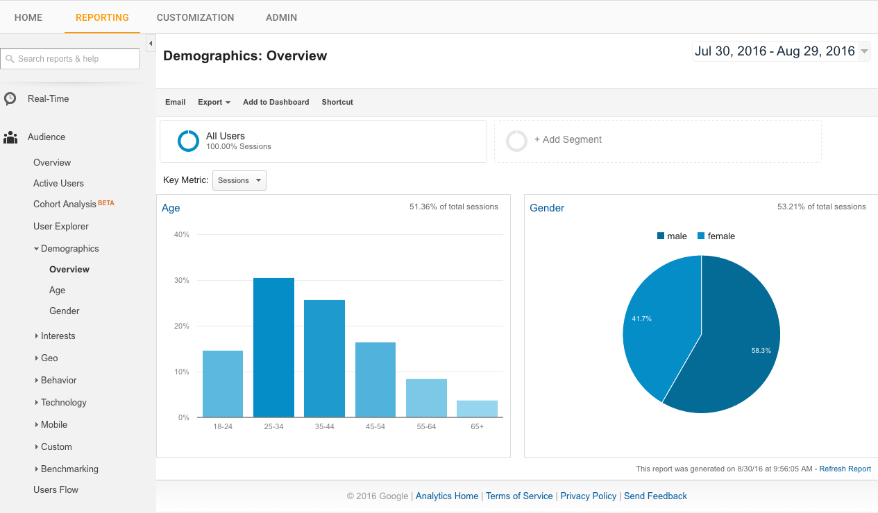 Twitter campaign demographic overview